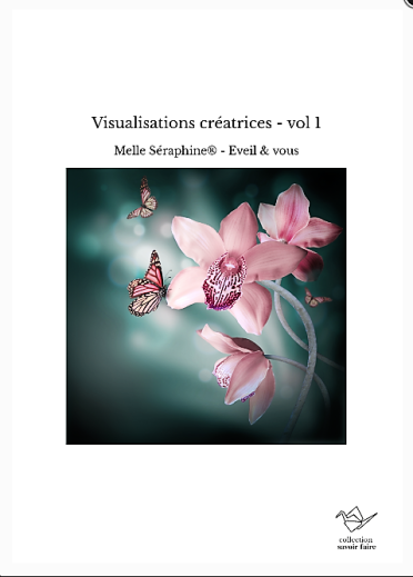 visualisations créatrices vol 1 (2)
